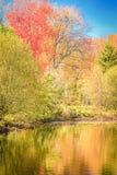 Jesieni odbicia fotografia stock