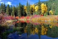 jesienią odbicia Obrazy Royalty Free