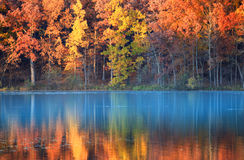 Jesieni odbicia zdjęcia royalty free