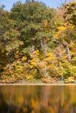 Jesieni odbicia Obraz Stock