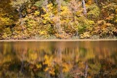 Jesieni odbicia Zdjęcie Royalty Free