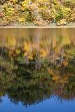 Jesieni odbicia Zdjęcia Stock