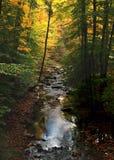 Jesieni odbicia Fotografia Royalty Free