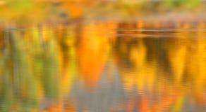 Jesieni odbicie Zdjęcia Stock