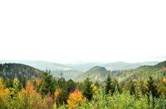 Jesieni Osikowi drzewa z mgłowymi górami w tle Fotografia Stock