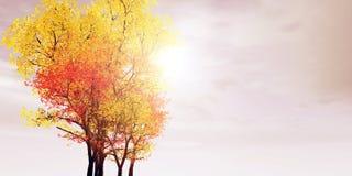 jesienią otoczenia Fotografia Stock