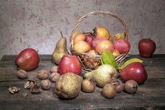 Jesieni owoc Zdjęcia Royalty Free