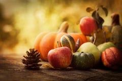 Jesieni owoc Fotografia Royalty Free