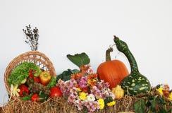 Jesieni owoc i warzywo Zdjęcia Royalty Free