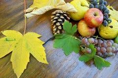 Jesieni owoc na drewnianym stole fotografia royalty free