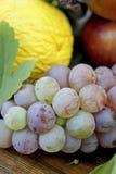 Jesieni owoc na drewnianym stole obraz stock