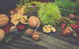 Jesieni owoc na drewnie, Retro spojrzenia pojęcie Zdjęcia Stock