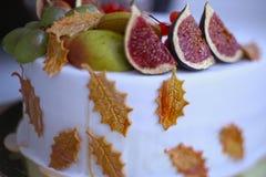 Jesieni owocowy jabłko, bonkreta, figa, granatowiec, viburnum Fotografia Stock