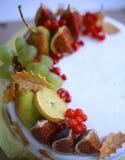 Jesieni owocowy jabłko, bonkreta, figa, granatowiec, viburnum Obrazy Royalty Free