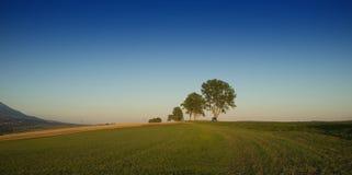 Jesieni panorama Zdjęcia Royalty Free