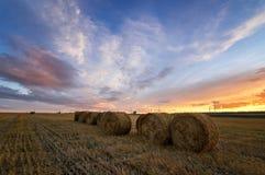 Jesieni panoramy wiejski pole z rżniętą trawą przy zmierzchem Zdjęcia Stock