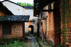 Jesieni piękno Ginkgo Biloba w Nanxing mieście Obraz Stock