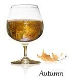 Jesieni piękno Zdjęcia Stock