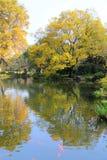 Jesieni piękno Xihu, Zachodni jezioro Obraz Royalty Free