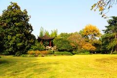 Jesieni piękno Xihu, Zachodni jezioro Zdjęcie Stock
