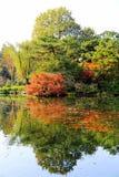Jesieni piękno Xihu, Zachodni jezioro Fotografia Royalty Free