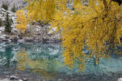 jesieni piękny jezioro Obrazy Stock