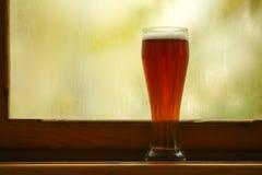 Jesieni piwny szkło Obraz Royalty Free