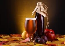 Jesieni piwo Zdjęcia Royalty Free