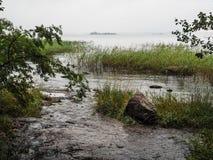 Jesieni podeszczowa natura Naturalny jezioro w spadku Przypływy osaczoni zdjęcia stock