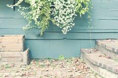 Jesieni podwórze Obraz Stock