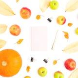 Jesieni pojęcie spadków liście, jabłczana owoc i bania z, notatnikiem, piórem i klamerkami na białym tle, Dziękczynienie Dzień pł obrazy royalty free