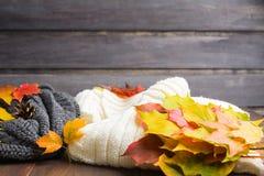 Jesieni pojęcie z ciepłymi ubraniami i spadków liśćmi Zdjęcie Stock