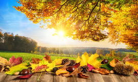 Jesieni pojęcie z liśćmi i krajobrazem fotografia royalty free