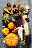 Jesieni pojęcie z sezonowymi owoc i warzywo Fotografia Stock