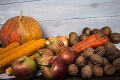 Jesieni pojęcie Zdjęcia Stock
