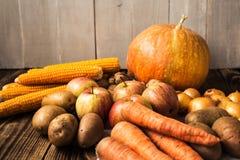 Jesieni pojęcie Fotografia Stock