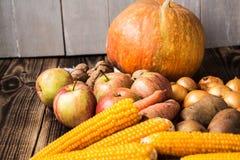 Jesieni pojęcie Obrazy Stock