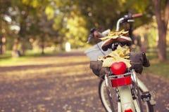 Jesieni pojęcie Z rowerem Fotografia Stock