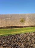 jesienią pola fotografia stock