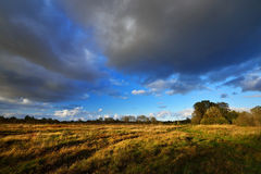 Jesieni pola krajobraz Obrazy Royalty Free