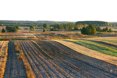 Jesieni pola w Lithuania, Europa obraz royalty free
