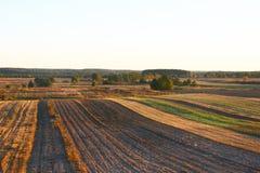 Jesieni pola w Lithuania, Europa fotografia stock
