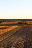 Jesieni pola w Lithuania, Europa zdjęcia stock