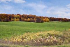 jesienią pole Obrazy Royalty Free