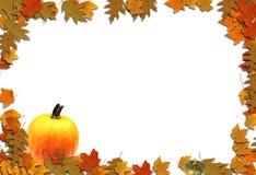 jesieni projekt Obraz Royalty Free