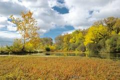 Jesieni pustkowie Obrazy Stock