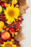 Jesieni rama Obrazy Royalty Free