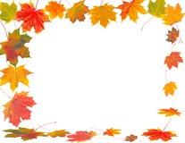 Jesieni rama Obraz Stock