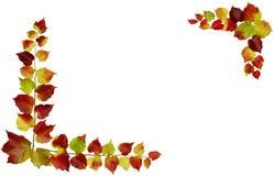 jesienią rama Zdjęcie Royalty Free