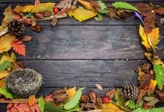 Jesieni rama barwioni liście na naturalnym drewnianym tle Zdjęcia Stock